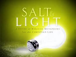 Salt& Light