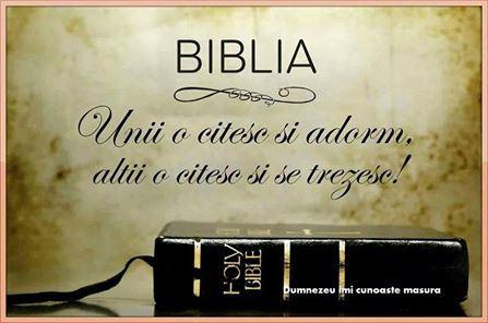 biblia-imi