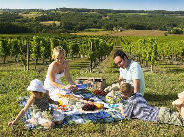 family-enjoying-a-picnic_base1