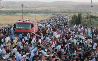 imigranti.xpy7cjt540
