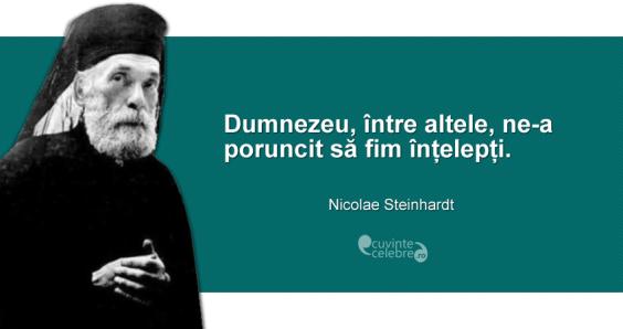 Citat-Nicolae-Steinhardt