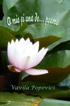 O_mie_si_una_de..._poeme_2016-233x350