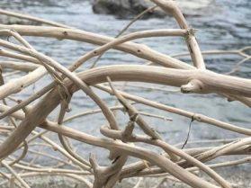 driftwood-1674668_960_7201-400x300